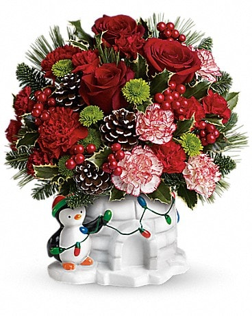 Send a Hug® Christmas Cutie by Teleflora