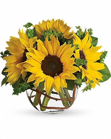 Flowers & More Sunny Sunflowers Bouquet