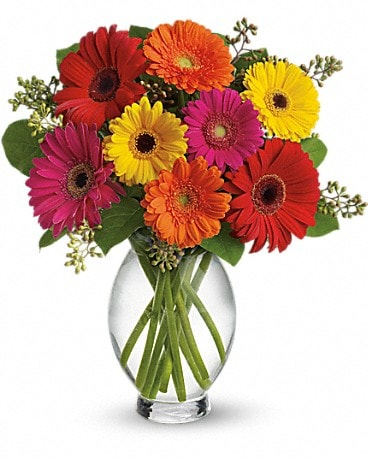 Gerbera Daisy Brights Bouquet