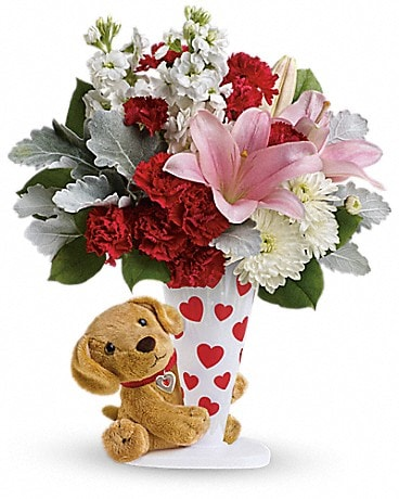 Send a Hug® You're Fur Me by Teleflora Bouquet