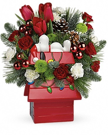 Snoopy's Merry Doghouse Jar by Teleflora Bouquet