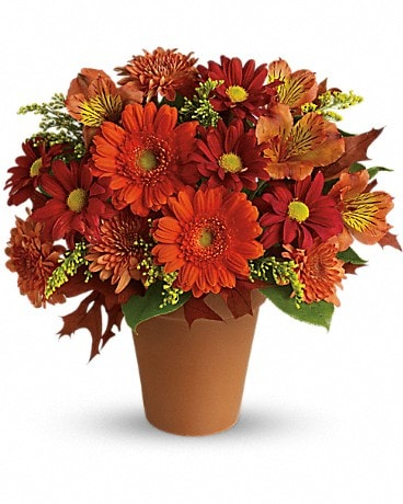 Golden Glow (T174-1A) Flower Arrangement