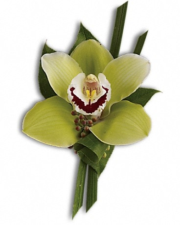 Green Orchid Boutonniere Boutonniere