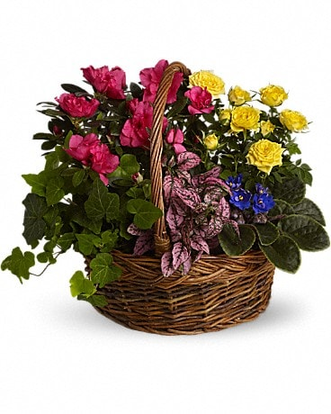 Blooming Garden Basket Basket Arrangement