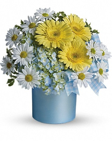 Teleflora's Once Upon a Daisy Bouquet