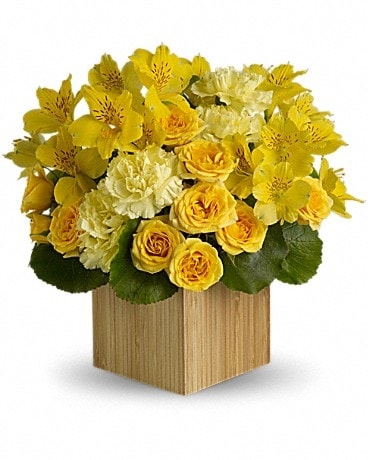Teleflora's Sunshine Chic Flower Arrangement