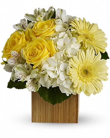 Teleflora's Pure Bliss Flower Arrangement