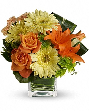 Teleflora's Citrus Crush Flower Arrangement