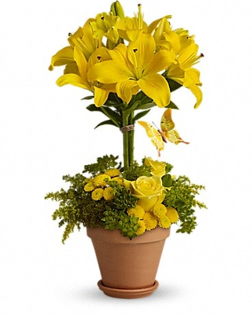 Yellow Fellow - by Lary's Florist & Designs LLC Bouquet