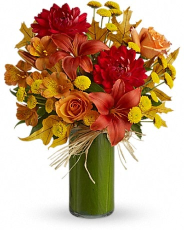 Fall flowers delivery colorado springs co skyway creations harmony of light mightylinksfo