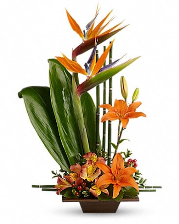 Teleflora's Exotic Grace T77-1A Flower Arrangement