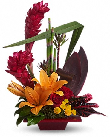 Teleflora's Tropical Bliss - by Lary's Florist & Flower Arrangement