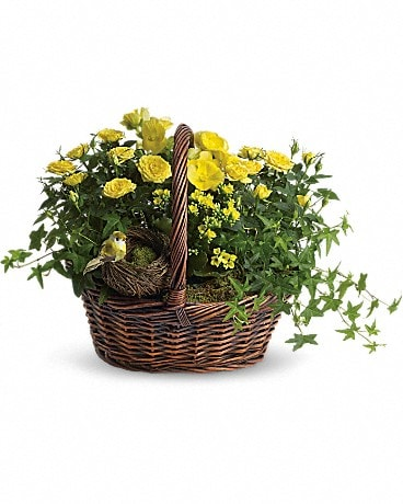 Yellow Trio Basket Basket Arrangement