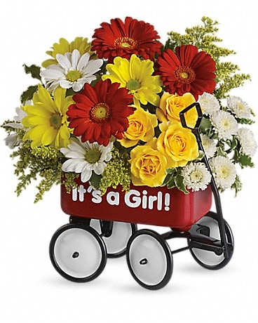 Baby's Wow Wagon by Teleflora - Girl Flower Arrangement