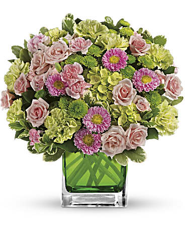 Make Her Day By Teleflora In New Castle De The Flower