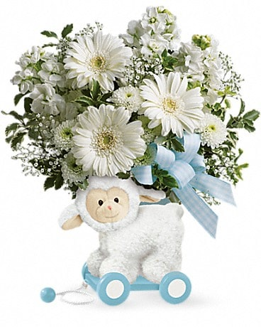 Teleflora's Sweet Little Lamb - Baby Blue Bouquet