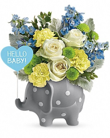 Alfa's Hello Sweet Baby - Blue Bouquet