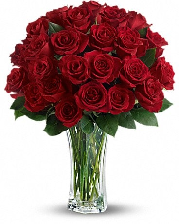Love and Devotion - 2 Dozen Long Stemmed Red Roses Bouquet