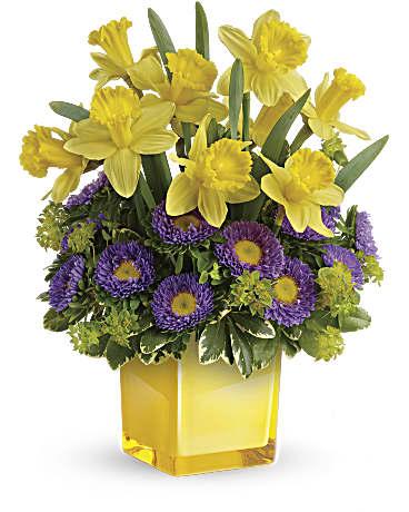 Conshohocken Florist Flower Delivery By Prestigious Rose