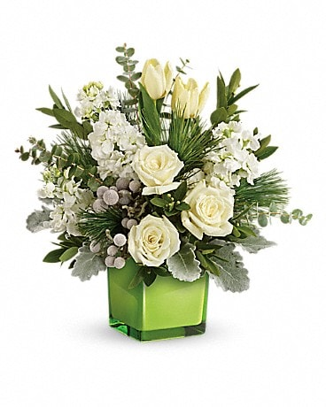 Teleflora's Winter Pop of Lime Bouquet