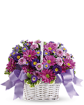 Daisy Daydreams - Basket Arrangement