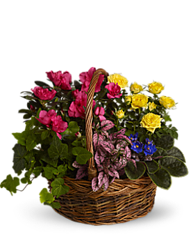 Blooming Garden Basket - Basket Arrangement