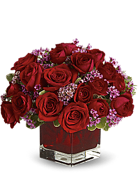 Never Let Go by Teleflora - 18 Red Roses - Bouquet