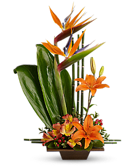 Teleflora's Exotic Grace - Flower Arrangement