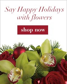 Shop Christmas Flowers