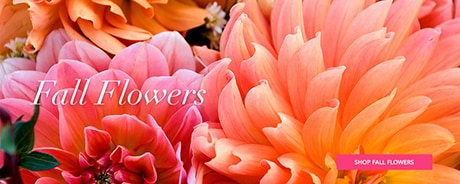 Delivery Fall Flowers
