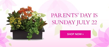 Send Parents' Day Flowers