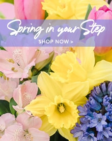 Spring Bouquets Delivery to Saratoga Springs