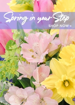Spring Flowers Arrangements Delivery to Sunnyside