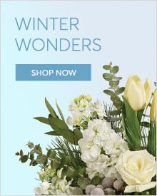 Send Winter Bouquets