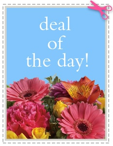 Summer Flowers-  Deal of the Day - Biggest Freshest Arrangement
