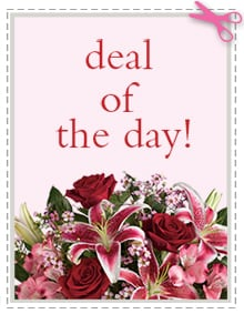 Send Valentine's Day Flowers -  Deal of the Day - Biggest Freshest Arrangement