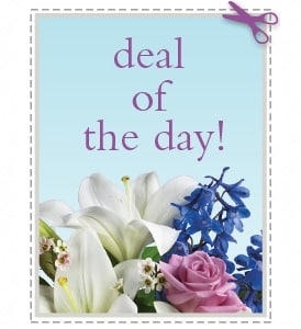 Winter Flowers - Deal of the Day - Biggest Freshest Arrangement
