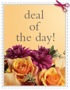 Fall Flowers Delivery -  Deal of the Day - Biggest Freshest Arrangement