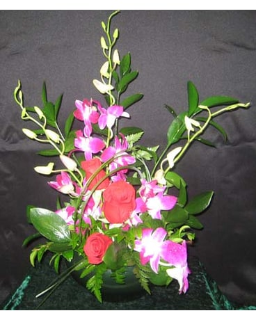 Exotic Orchids And Roses In Anchorage Ak Alaska Flower Shop