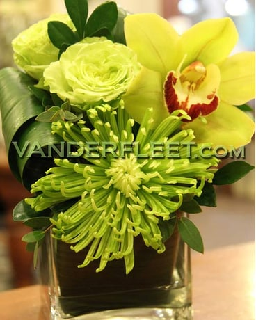 Green Envy Orchid Rose Floral Design