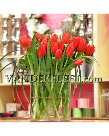 Tulips in the Grass Floral Design