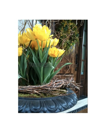 Torontos Top Florist In Etobicoke Spring Outdoor Planters