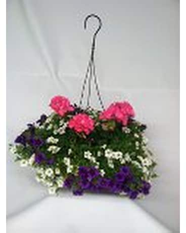 Large Combo Hanging Basket