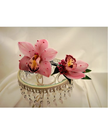 Pink Cymbidium Orchid Set