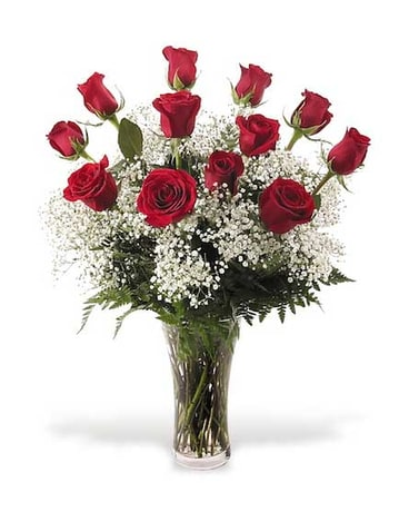 Dz Long Stem Red Roses