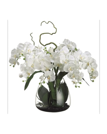 Phalaenopsis Orchids - Artificial Arrangement