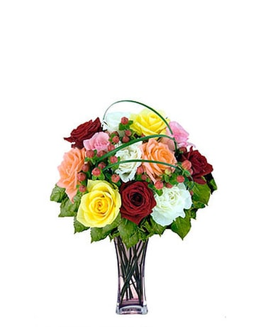 12 Mixed Designer Long Stem Roses