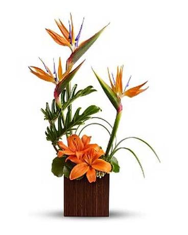 Permanent silk arrangements delivery bradenton fl joseys poseys quick view bamboo silk paradise mightylinksfo
