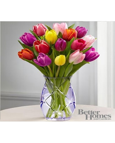 Spring Tulips Better Homes and Gardens