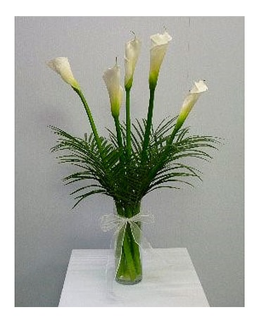 Cala Lilies in Cylinder Vase